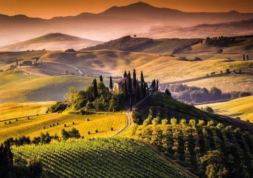 Tìm hiểu rượu vang Tuscan